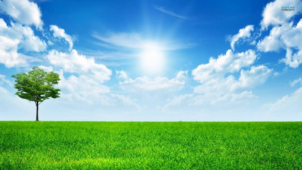 sunny-blue-sky-nature